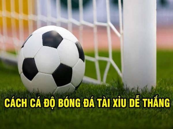 Phân tích tài xỉu bóng đá dễ hiểu nhất cho người mới